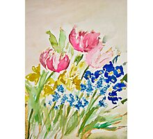 Tulip, Daffodil, Pansy, and Grape Hyacinth Spring Bouquet Photographic Print