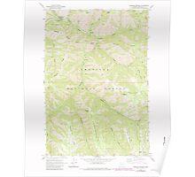 USGS Topo Map Oregon Bingham Springs 279045 1963 24000 Poster