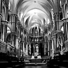 Canterbury  Cathedral  interior B/W  by larry flewers