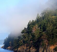 Galiano Island draped in morning mist by TerrillWelch