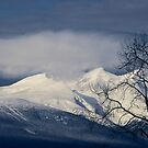 Winter Mountain Blues by Ted Widen
