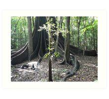 The Forest Giant, Wingham Brush Art Print