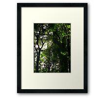 Light in 'The Brush' Framed Print