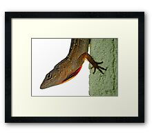 Redneck Larry Framed Print