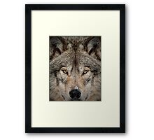 Shiver Me Timber Framed Print