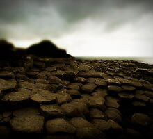 Giant's Causeway, Northern Ireland by Margaret Goodwin