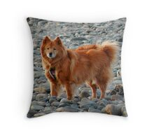 'Cindy on the Rocks 2' Throw Pillow