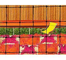 """Backyard Barricade"" Photographic Print"