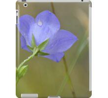 A pleasant memory iPad Case/Skin