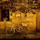 La Bicyclette ! by Irene  Burdell