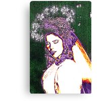 Fairy Bride... Canvas Print