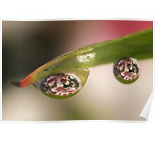 Through the Lens of a Droplet Poster
