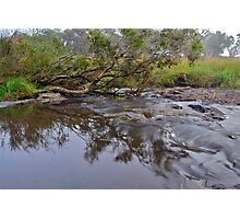 Apsley River.  24-1-11.    no2. Photographic Print
