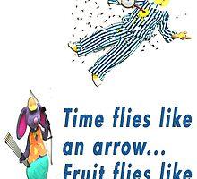 Time Flies by Darren Stein