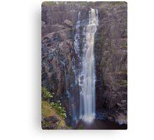 Apsley Falls    24-1-11. Canvas Print