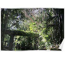 """Jungle"" - Disneyland CA Poster"
