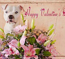 Happy Valentine by Zdogs