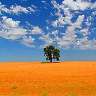 Lone Tree in Outback Victoria by Paul Campbell Psychology