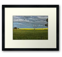 Cropping Country Framed Print