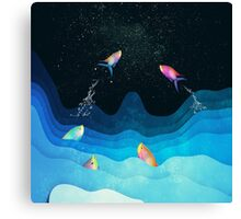 Come to reach the stars Canvas Print