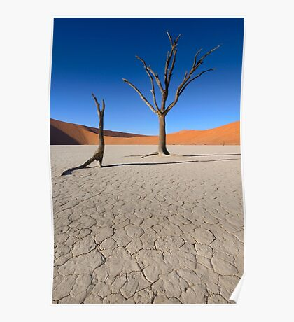 Dead Vlei - Namibia Africa Poster