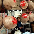Peering Through Coconuts - Macau by JodieT