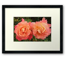 Beautiful Couple Framed Print