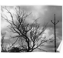 leafless, lifeless...still standing Poster