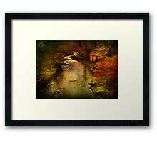 Looking Downstream Framed Print