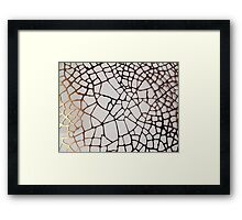 Gold Cobweb Framed Print