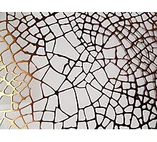Gold Cobweb Photographic Print