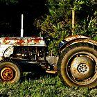 retired farmworker by JohnHDodds