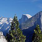 Half Dome - Yosemite, CA by © Loree McComb