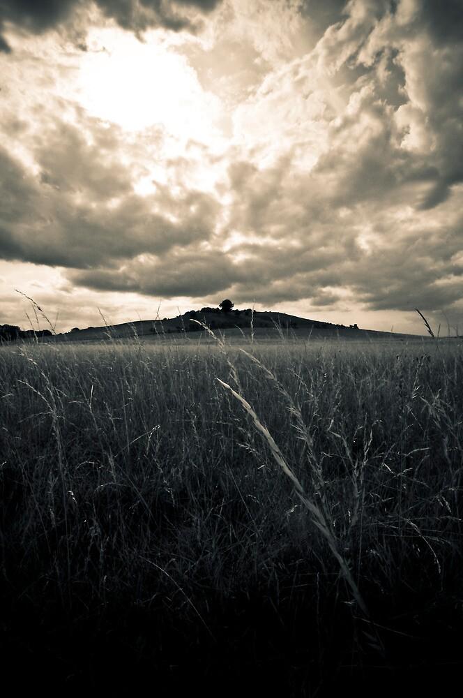 Pegsdon Hills - Bedfordshire   England by 4colourprogress