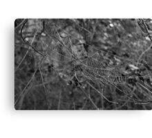 web Canvas Print