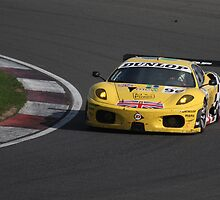 Le Mans Series Racing at Silverstone by ThatsAndy