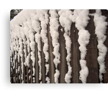 Snow on a fence Canvas Print