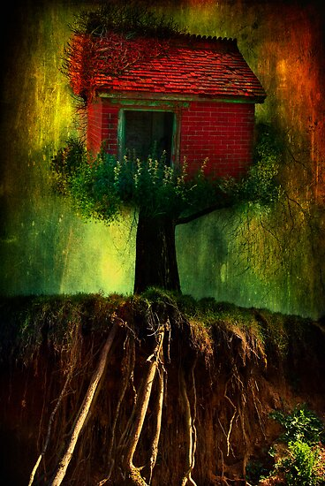 Red House In A Tree by ajgosling