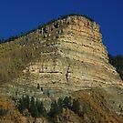 Aspen Butte by Dawn Parker