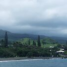 Misty emerald hills of Hana by Marjorie Wallace