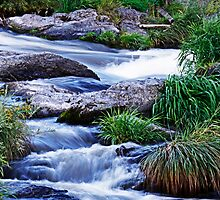 Rogue River Rapids by martingilchrist