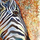Zany Zebra by Debbie Schiff