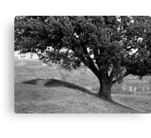 On the crest of the hill (35mm) Canvas Print