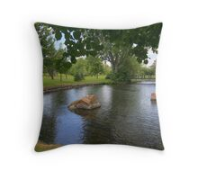 The Winding Tay River Throw Pillow