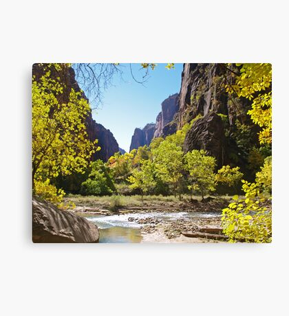 Virgin River in Zion Canvas Print