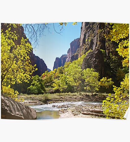 Virgin River in Zion Poster