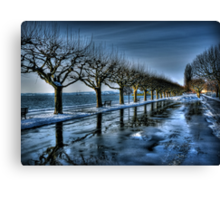 Trees of the Zugersee Canvas Print