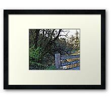 A Walk in the Park 5 Framed Print