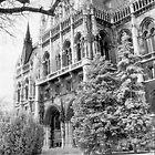 Parliment, Budapest (South Entrance) by Rodney Johnson