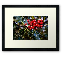 Happy Holly-days - Kent, WA Framed Print